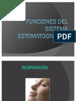 Funciones Del Sistema Estomatognatico