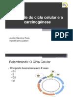 carcinogenese