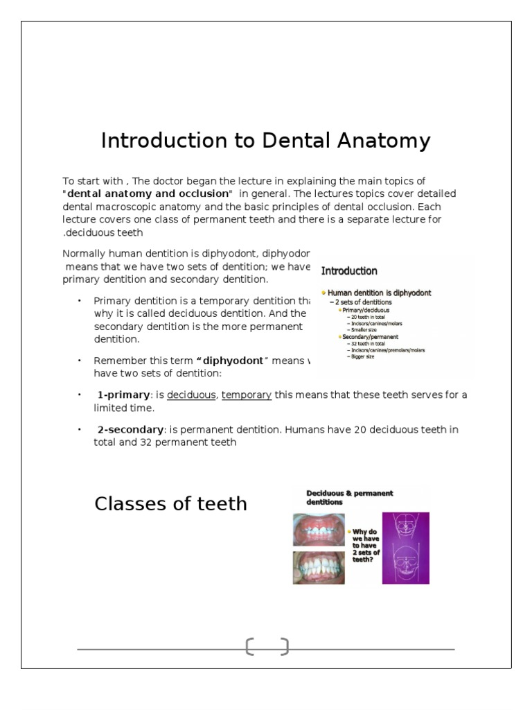 Intro to Dental Anatomy | Tooth | Facial Features