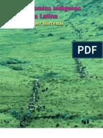 Autonomias indigenas en América, Francisco López Bárcenas
