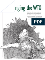 Challenging the WTO