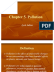 Chapter 5. Pollution