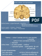 17345128-parkinson-neuro