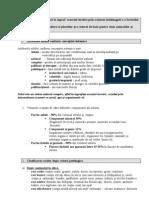 Filehost_soluri Subiecte Scris Complet