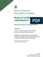 Roots of violent radicalisation
