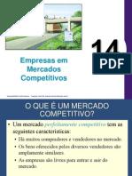 Capitulo 14 Empresas Competitivas