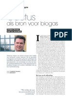 Cactus als bron voor biogas, Philippe Mengal, CEO van Greenwatt