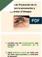 Capacitacion Dengue Vectores y Promocion