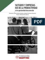 Discapacitados Empresa Analisis Productividad