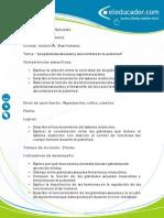 Competencias Ciencias 10 Las Glandulas Sexuales