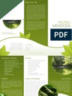 medio-ambiente