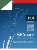 EN Snare Endovascular System