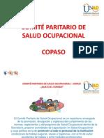DIAPOSITIVAS COPASO