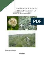Diagnóstico de Plantas Medicinales 1