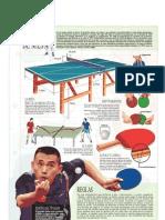 Ping pong, Tenis de Mesa