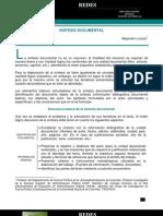 Criterios Sintesis Documental Version II