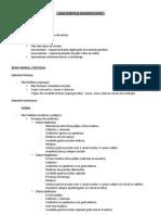 Características diagnosticantes - Biologia de Invertebrados