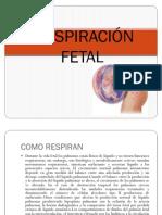 Respiracion Fetal