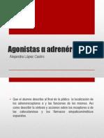 Agonistas α adrenérgicos