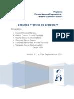 Práctica 2 Biología(blog)