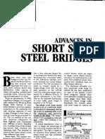Advances in Short Steel Span Bridges