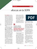 Moscas en La SOPA