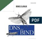 Bind 9 Linux