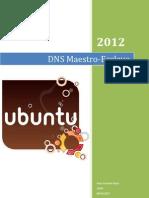 DNS Ubuntu