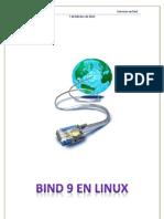 Bind 9 en Linux