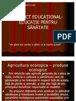 Proiect Educational Educatie Pentru Sanatate