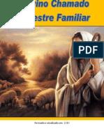 o divino chamado do mestre familiar