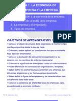 Tema 1 La Economia de La Empresa y La Empresa