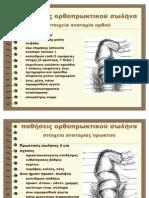 Παθήσεις ορθοπρωκτικού σωλήνα