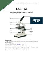 Microscope Skills Manual