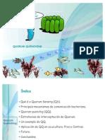 Quorum Quenching