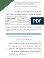 Albert Iglesia - Portugues - Exercicios Para SEPLAG RJ Aula 03