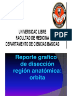 Diseccion Orbita - Manuel Alejandro Caicedo