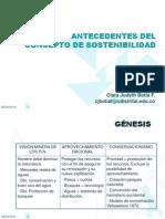ANTECEDENTES Desarrollo sostenible[1]