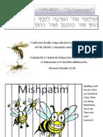 Mishpatim Hebrew 23_28