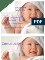 Desde la concepción hasta el nacimiento