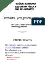 bioquimica carbohidratos