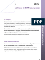 Resumo_Executivo_Pesquisa BPM _ IBM 2010