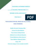 ANTECEDENTES_(practica_del_higado)[1]