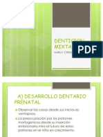 Denticion Mixta[1]