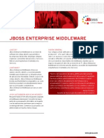 JBoss Enterprise 300507 Esp