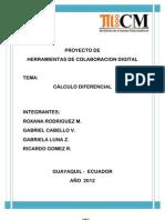 CALCULO DIFERENCIAL- INFORME