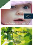 Enterobius kel 3