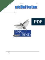 Práctica del Bind 9 en Linux