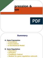 Gene Expression n Regulation