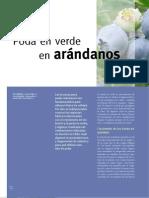 31 Poda_arandanos